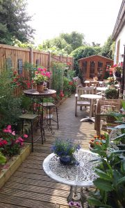 Garden 2 e1491823192474 180x300 The Parlour Alley Gardens will be open from this weekend!